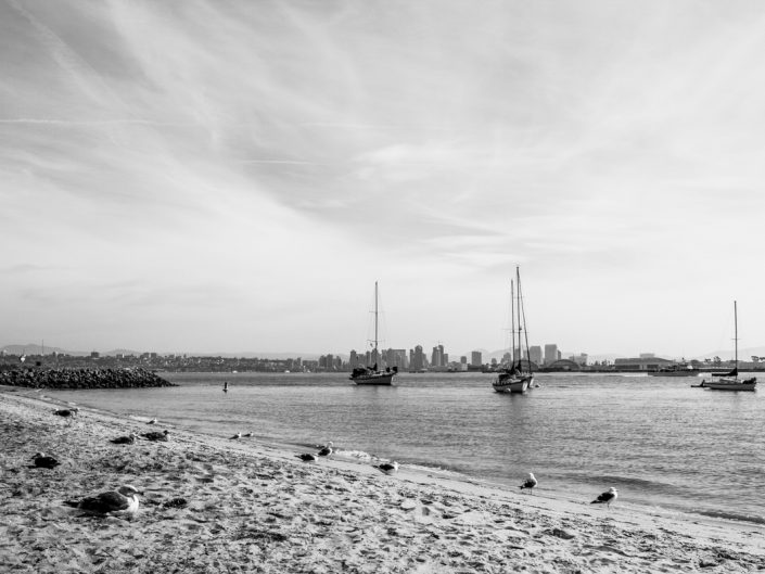 San Diego - Segelschiffe mit Skyline